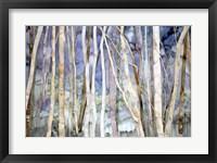 Framed Mystery Of Trees II