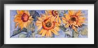 Framed Sunflowers VI