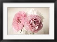 Framed Ranuncula Pink Vase