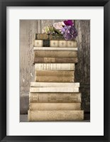 Framed Books II