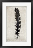 Framed Feather