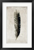 Framed Feather 2