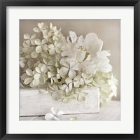 Framed White Flower Book