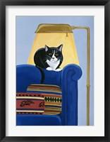 Framed Catmandu Keeping Warm