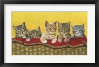 Framed Five Kittens In Basket