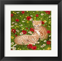Framed Ginger Kittens In Red Poppies