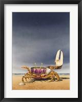 Framed Fiddler Crab