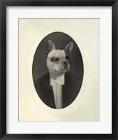 Framed English Bulldog