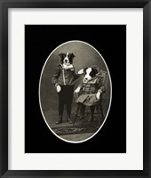Framed Border Collies