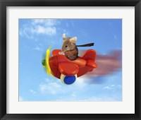 Framed Flying Mouse