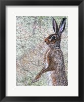Framed March Hare