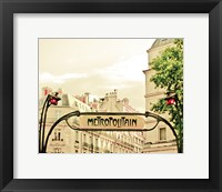 Framed Lily in Paris