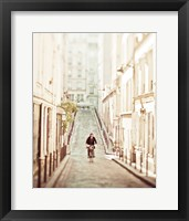 Framed Bicycle Thief