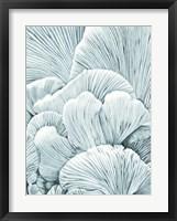 Framed Mushroom Gills I