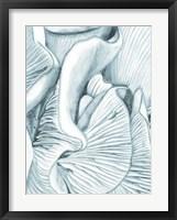 Framed Mushroom Gills III