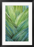 Framed Tropical Crop IV