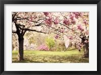 Framed Cherry Hill Morning