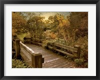 Framed Splendor Bridge