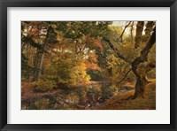 Framed Autumn's Edge