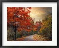 Framed Autumn Maples
