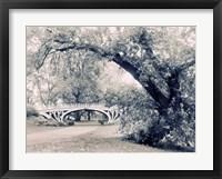 Framed Central Park Gothic