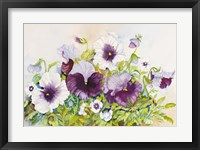 Framed Early Pansies