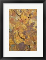 Framed Earth's Floor II