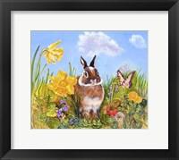 Framed Bunny In Meadow