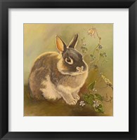 Framed Rabbit In Columbine