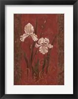 Framed Iris Design