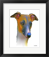 Framed Greyhound 1
