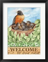 Framed Robin Welcome