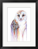 Framed Barred Rainbow Owl