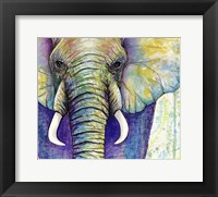 Framed Elephant Face