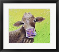 Framed Jersey Cow