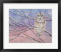 Framed Snowy Barred Owl