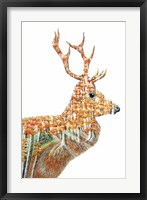 Framed Spirit of the Forest Deer Landscape