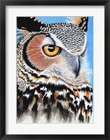 Framed Great Horned Owl Eye