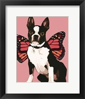 Framed Butterfly Dog 3