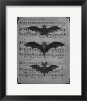 Framed Vintage Bats 1