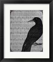 Framed Vintage Crow
