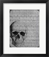 Framed Vintage Skull