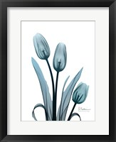 Framed Midnight Sky Tulip Trio