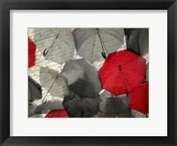 Framed Red Umbrella