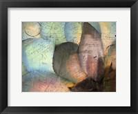 Framed Carte Postale Succulent