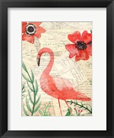 Framed Postcard Flamingo 2