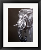 Framed Elephant Grounds 1
