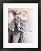 Framed Elephant Trail 1