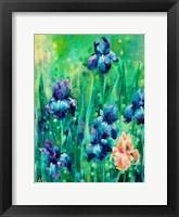 Framed Irises 1