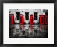 Framed London Phone Booths Bird
